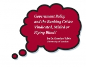 """Vindicated, Misled or Flying Blind?"" New thinkpiece on banking crisis"